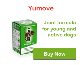 Buy Yumove from VetMedsDirect!