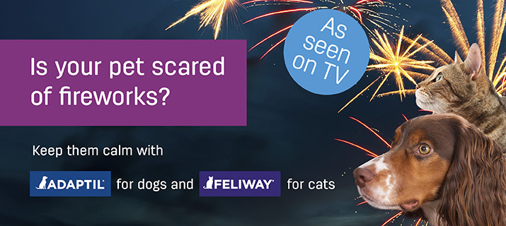 Feliway and Adaptil available from VioVet