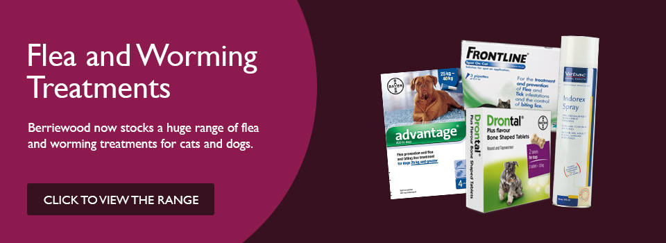 Berriewood now stocks Flea and Worming treatments