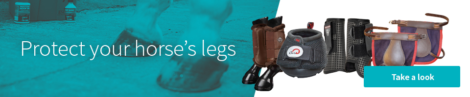 Leg protection for horses