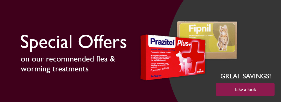 Special offers on Flea and Tick treatments