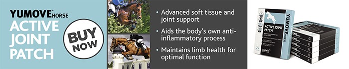 YuMove Horse Joint Patches