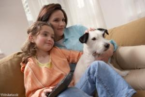 Choosing a family dog