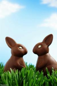 Owners warned not to feed dogs chocolate this Easter