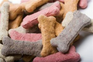 Think twice before you give your pet an extra treat, vet advises