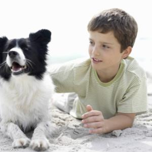 Owning a dog can create a sense of responsibility for kids