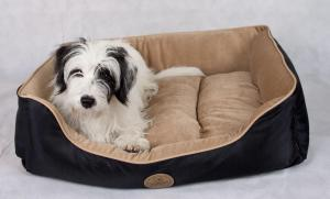 The importance of a quality dog bed