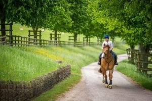 More of the UK's best bridleways