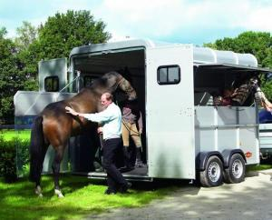 Safe travel for horses over long distances