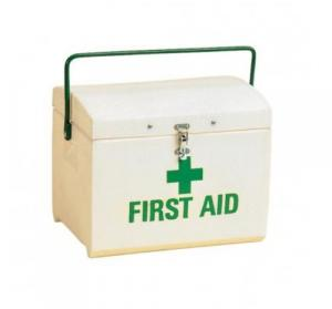 What should you have in your horse's first aid kit?
