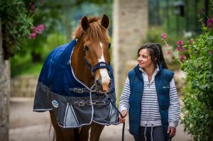 9 things horse owners love about spring