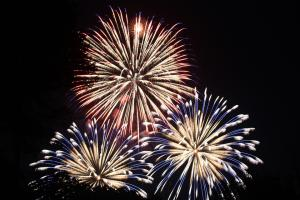Calming tips for reducing firework fear