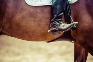 Major change to whip rules at British Showjumping