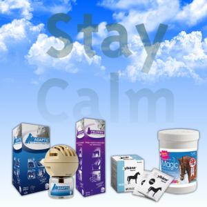 Pet Calming - Products in Focus