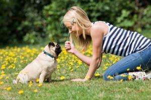 Holidaying with your dog: Part 2, accommodation and planning