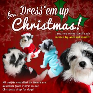 Dress 'em up for Christmas!