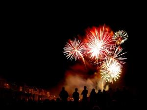 Keeping your dog safe on Bonfire Night