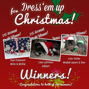 Dress 'em up for Christmas - Entrants and Winners!