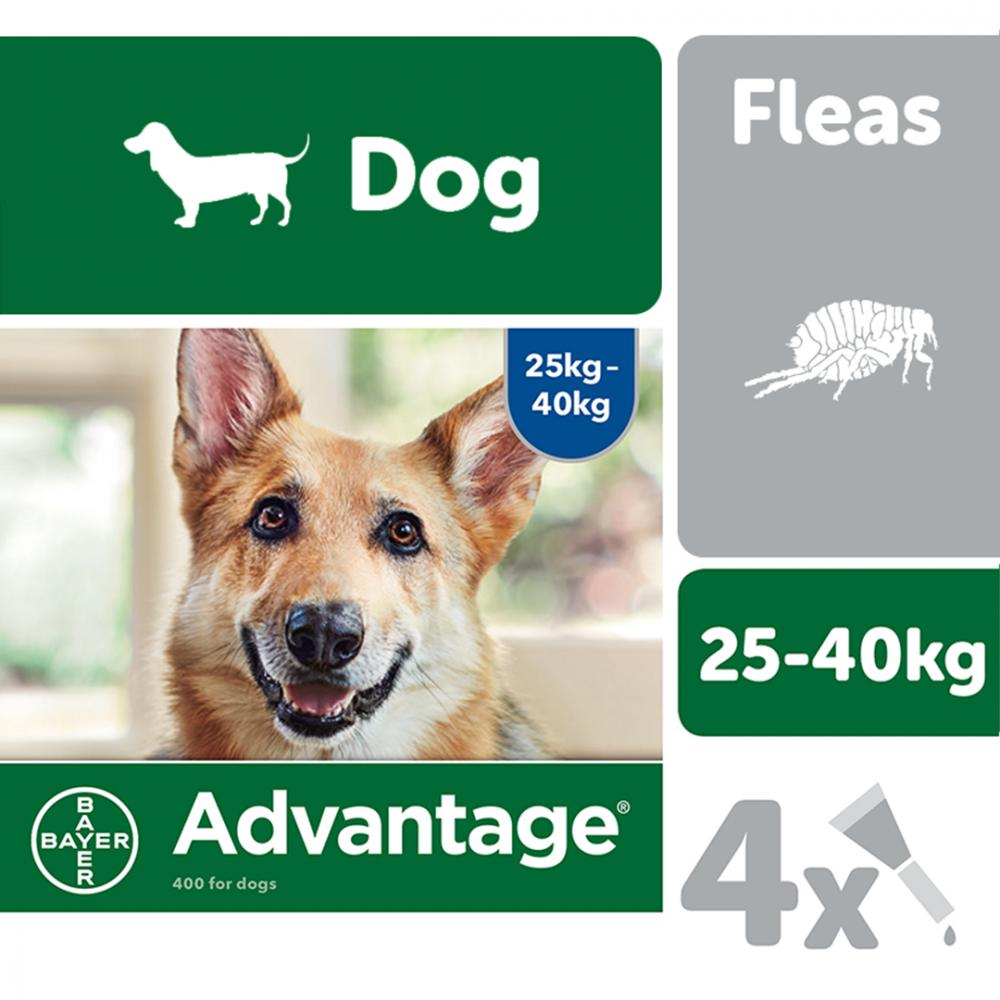 Advantage 400 Spot On Flea Control Extra Large Dog