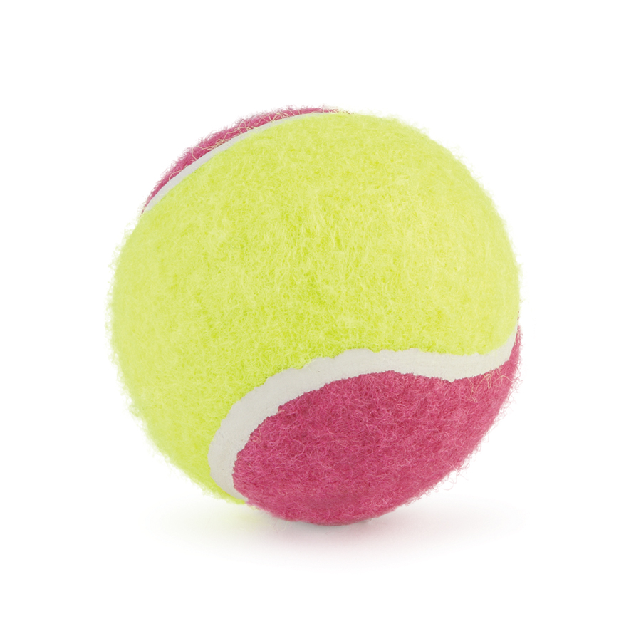 Ancol Assorted Tennis Balls Dog Toys