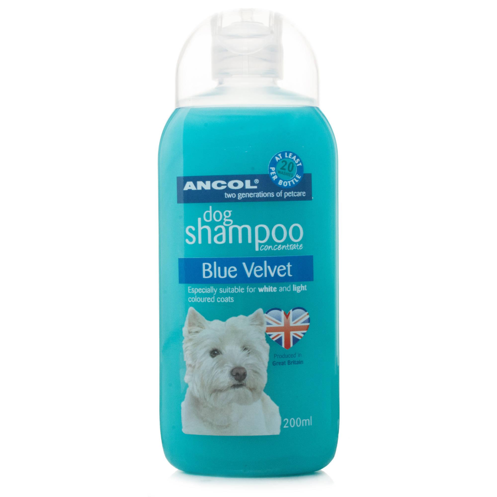 Dog Shampoo Reviews Uk
