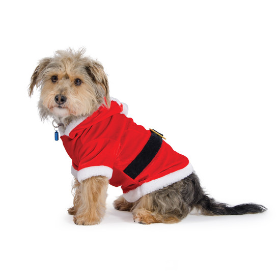 Ancol Small Bite Cute Red Santa Suit for Dogs
