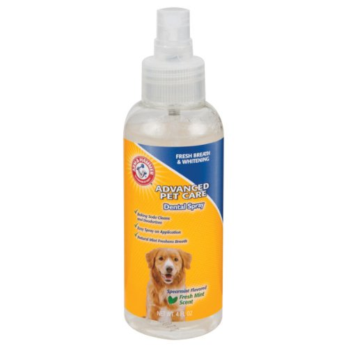 Arm & Hammer Spearmint Dental Spray for Dogs