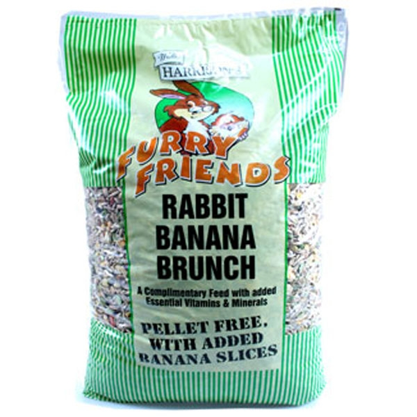 Walter Harrison's Furry Friends Banana Rabbit Brunch Food