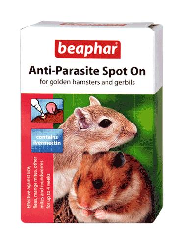 beaphar anti parasite spot on for golden hamsters gerbils. Black Bedroom Furniture Sets. Home Design Ideas
