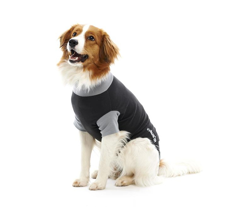 Buster Body Suit For Dogs Cats