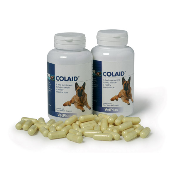 Colaid Digestion Support Tablets for Dogs