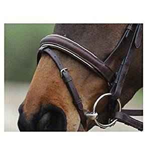 Collegiate Crank Flash Noseband With Piping