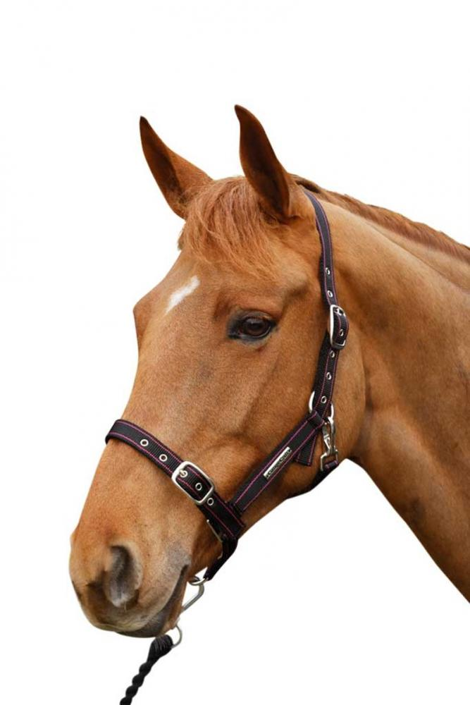 Cottage Craft Adjustable Headcollar with Clip