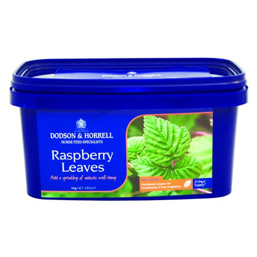 Dodson & Horrell Raspberry Leaves for Horses