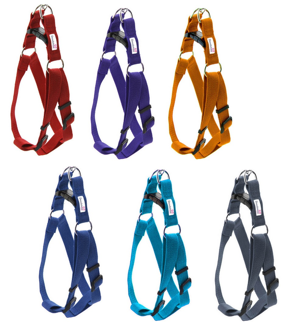 Doodlebone Bold Nylon Dog Harness