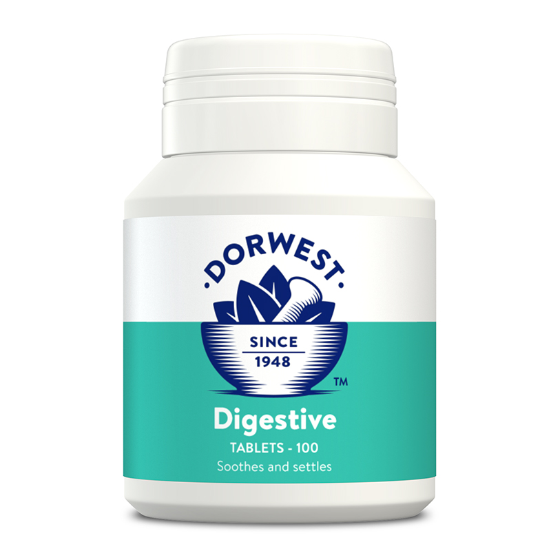 Dorwest Digestive Supplement for Dogs & Cats