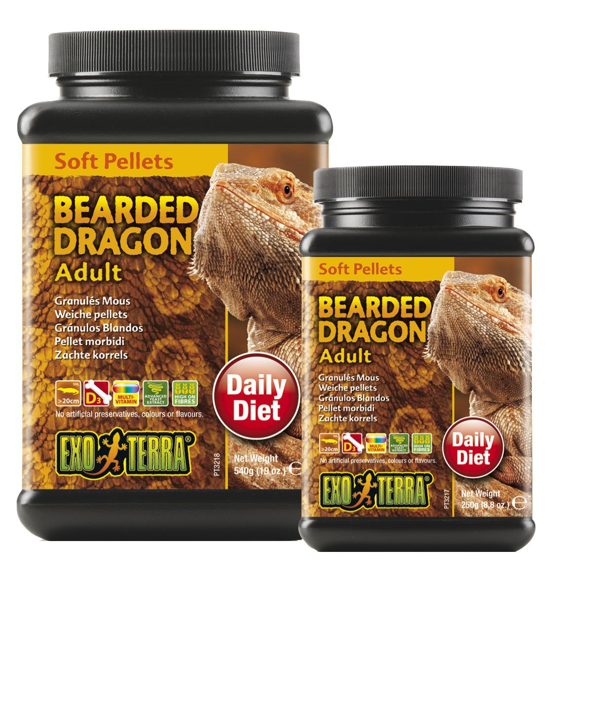 Adult bearded dragon hentay hairy girls
