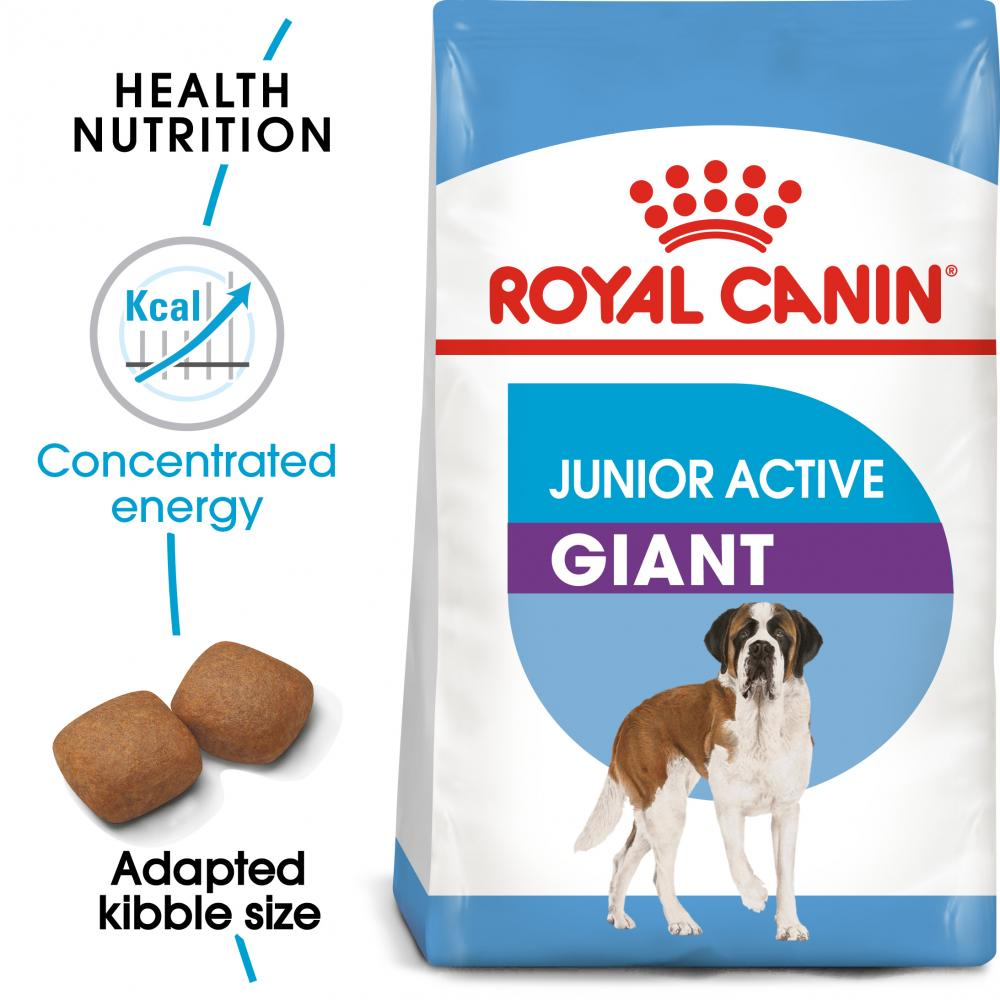 ROYAL CANIN® Giant Junior Active Dry Dog Food