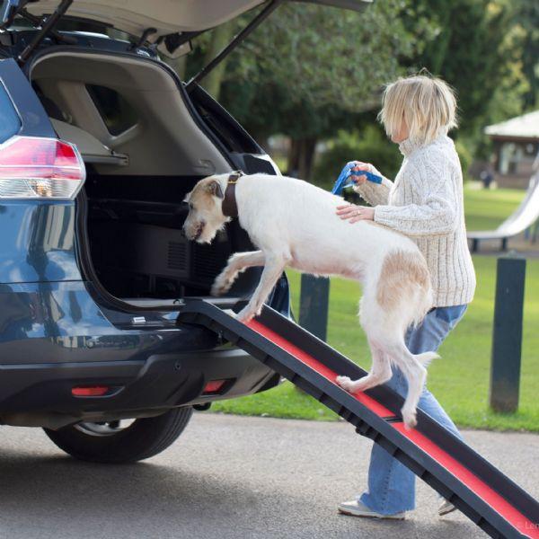 Dog Ramp For Car >> Henry Wag Lightweight Folding Pet Ramp