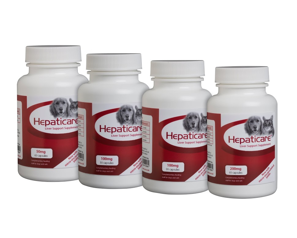 Hepaticare Liver Support Supplement