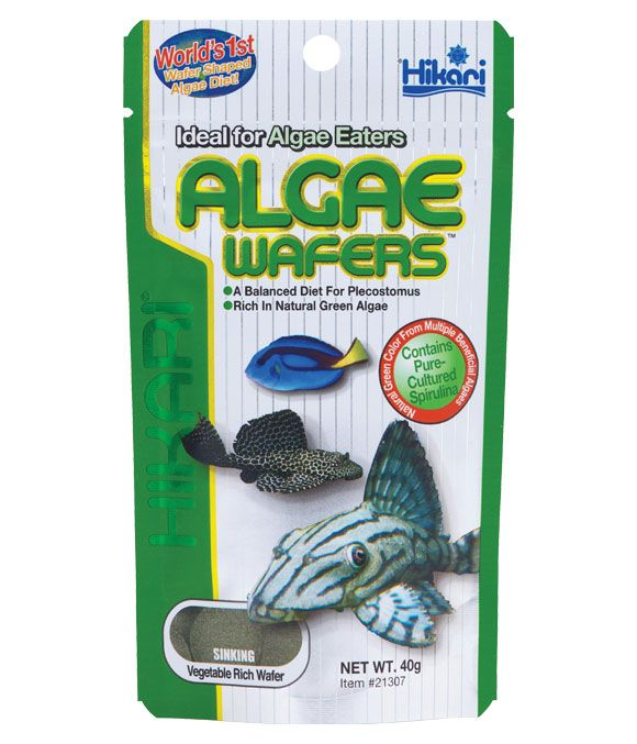 Hikari tropical algae wafers fish food for Hikari fish food