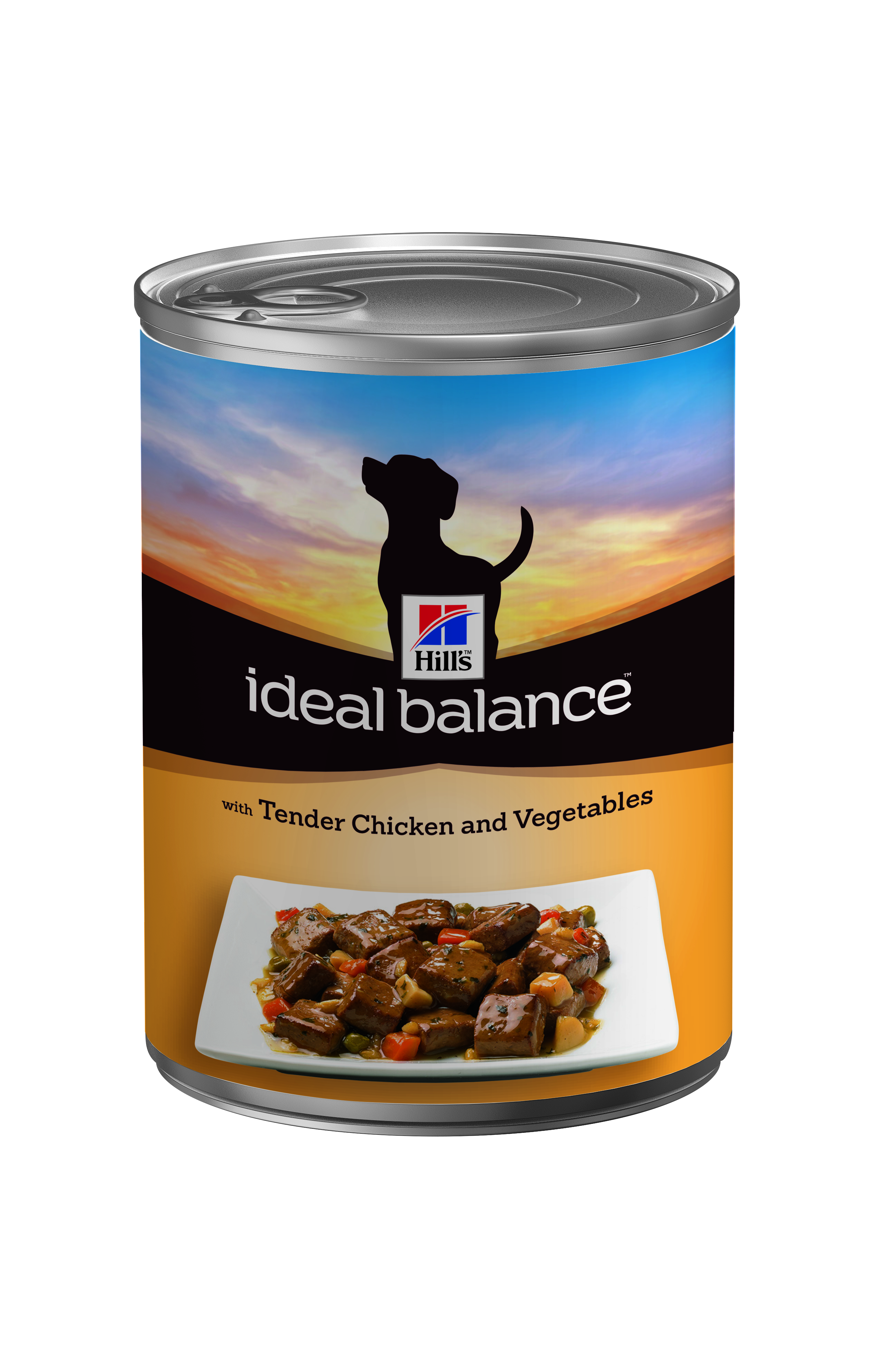 Hills Ideal Balance Adult Wet Dog Food