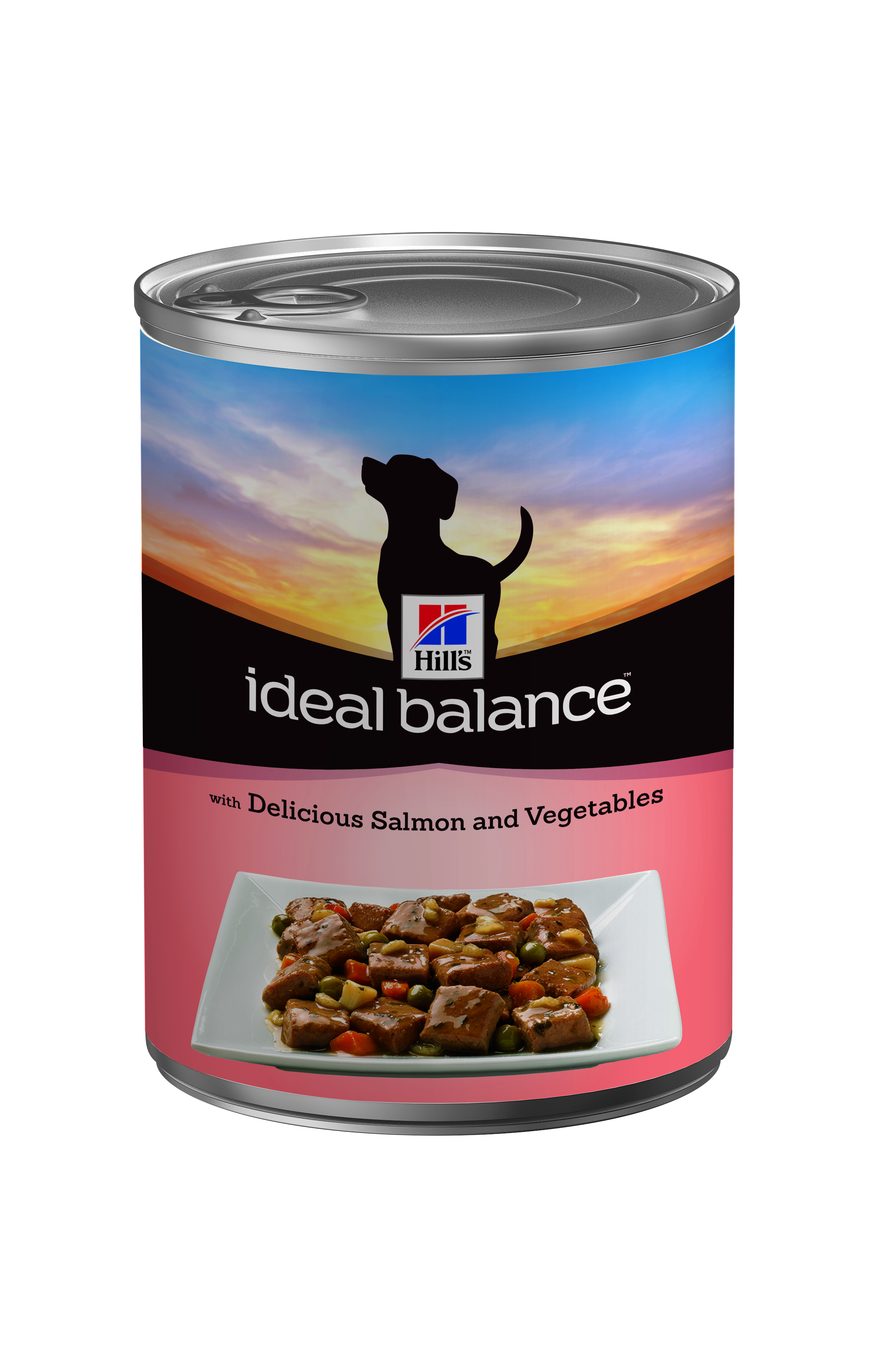 Hill S Ideal Balance Adult Dog Food Review