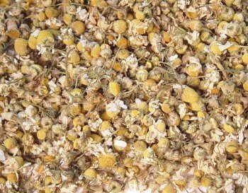 Hilton Herbs Chamomile Flowers for Horses