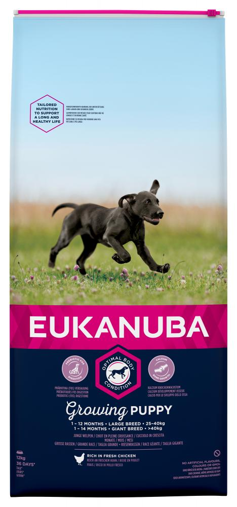 Eukanuba 🐶 Puppy Large Breed Dog Food
