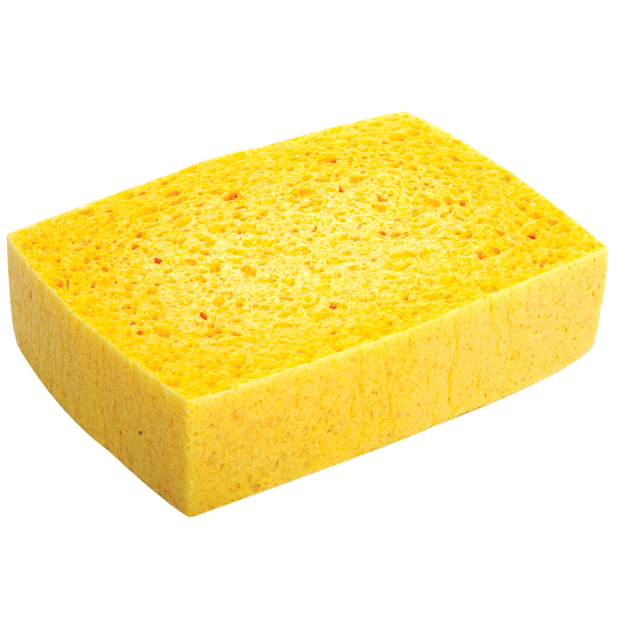 Lincoln sponge - Seven different uses of the kitchen sponge ...