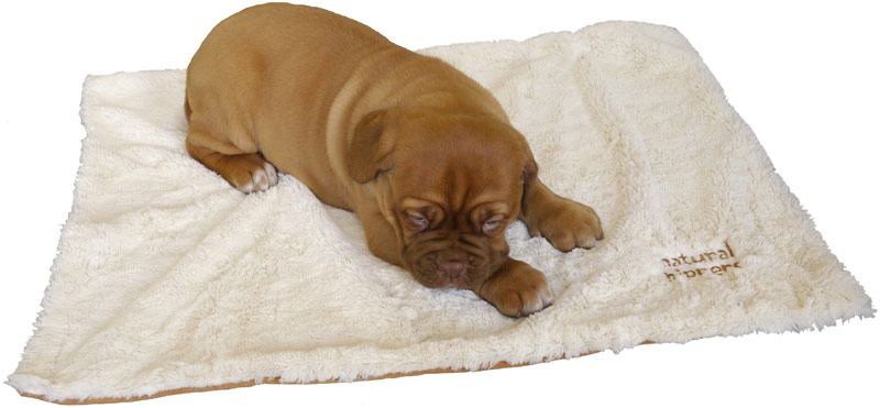 Rosewood Luxury Puppy Blanket