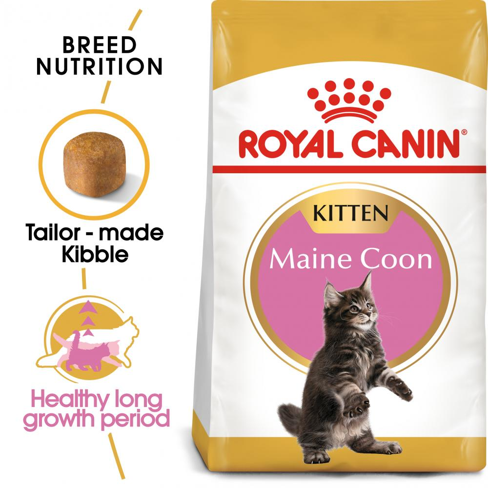 ROYAL CANIN® Maine Coon Kitten Dry Food