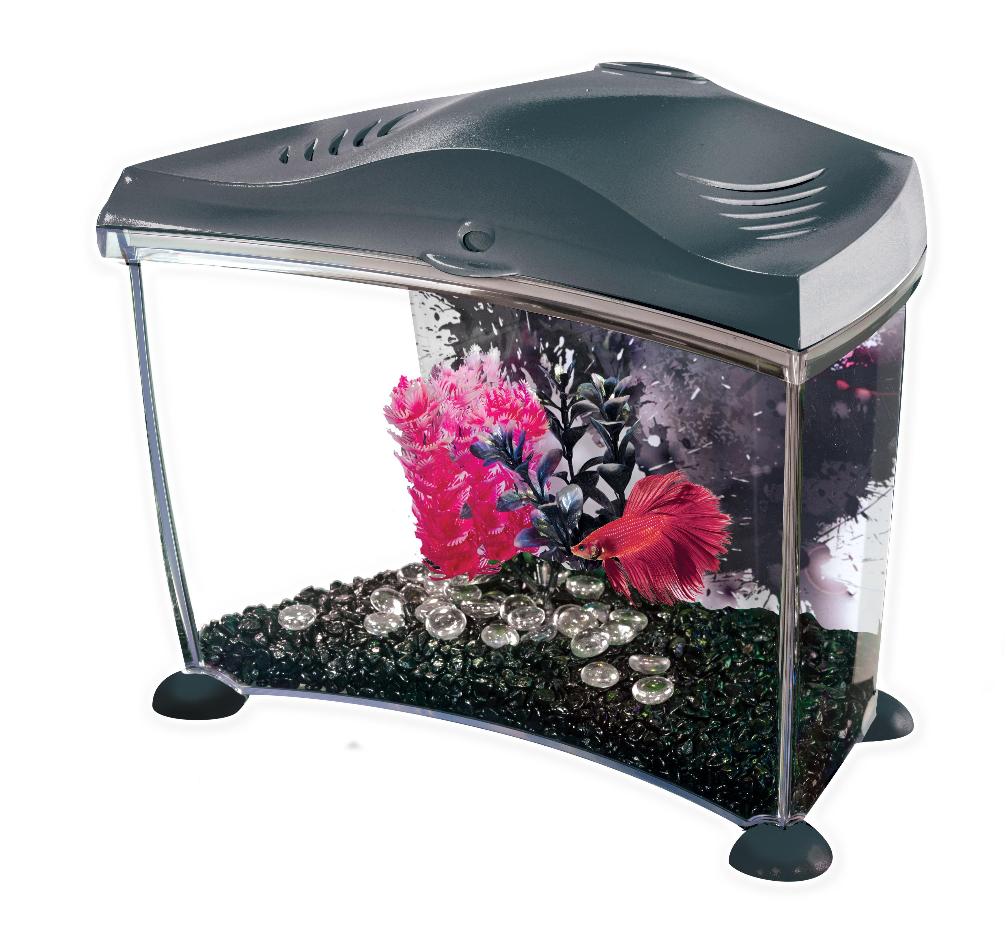 Marina betta fish tank for Do betta fish need a heater