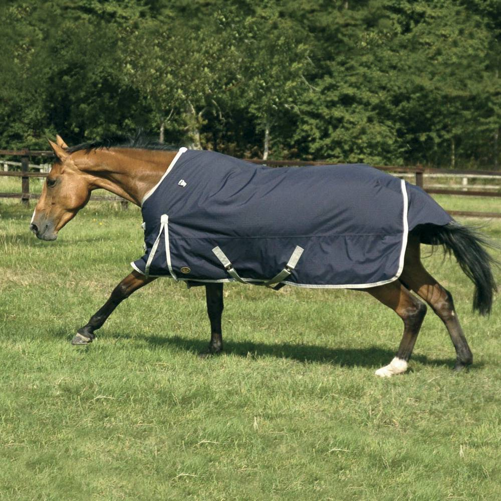 Mark Todd Autumner Turnout Rug